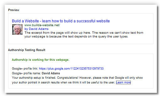 Rich Snippets Testing Tool results